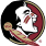Florida State Seminoles Wiretap