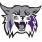 Weber State Wildcats Wiretap